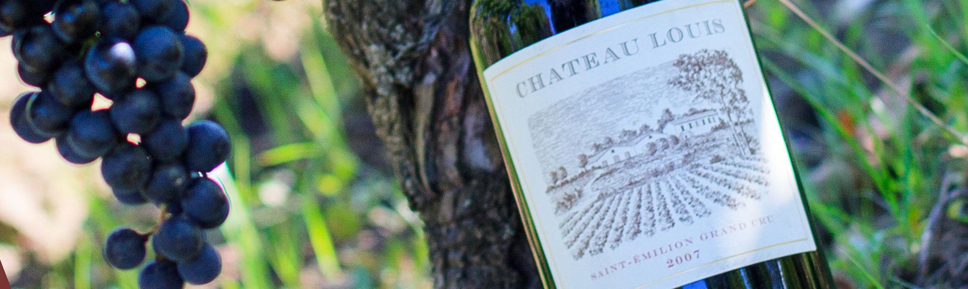 vin saint emilion chateau louis